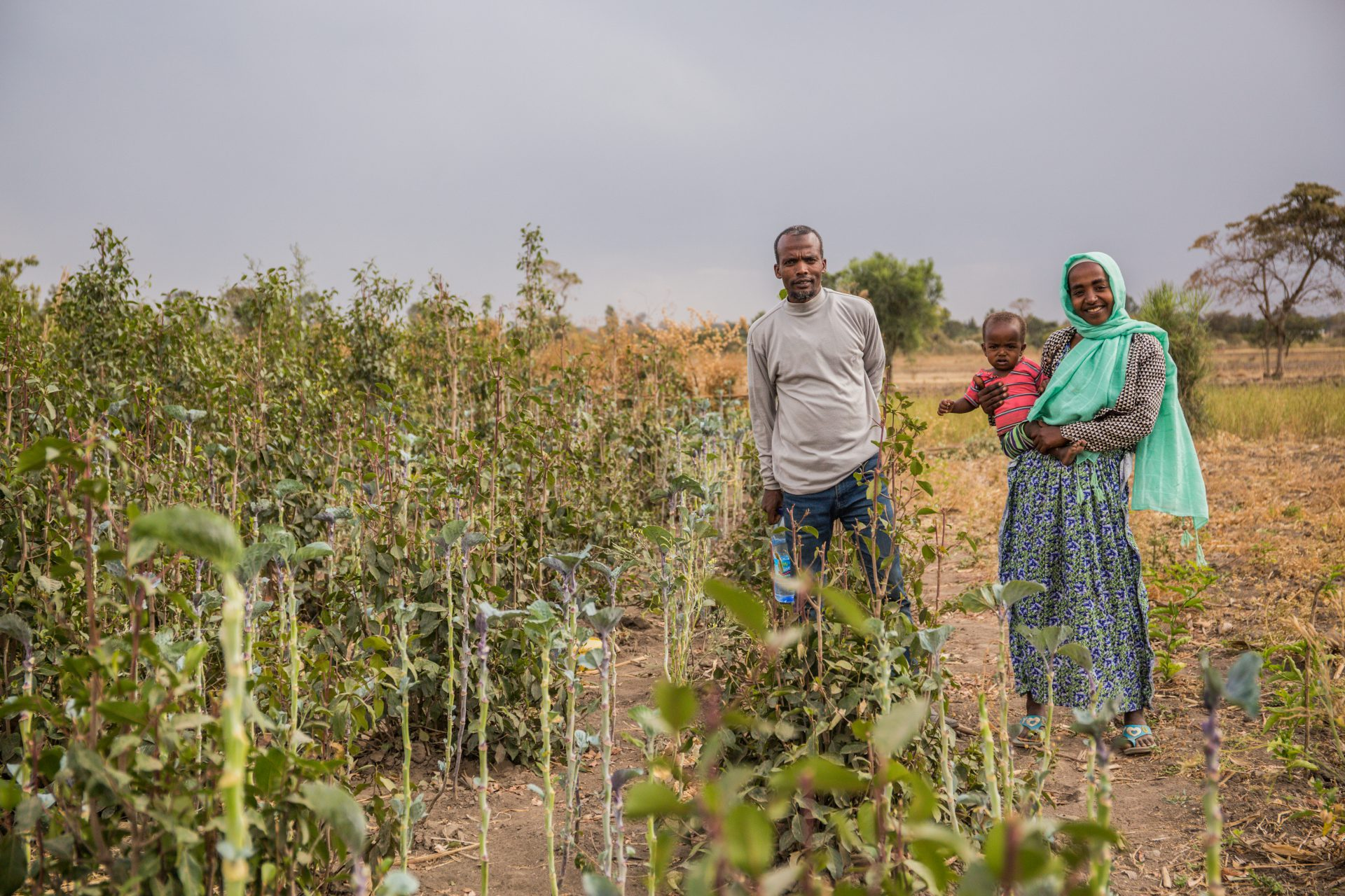 Mohammed also used to rely on the irrigation scheme, but is no longer able to use the water for his farm because so many others are using it too. ©Genaye Eshetu/ Genaye Eshetu Read more